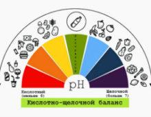 Причины повышенной кислотности мочи и ее определение в домашних условиях