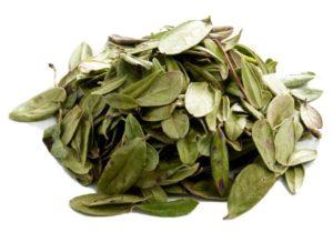 Сушенные листья брусники