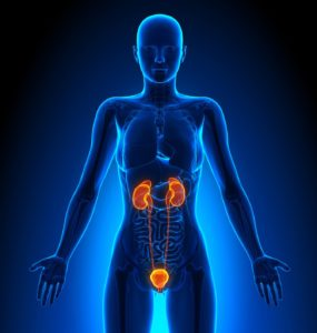 Рак мочеточника у женщин и мужчин: симптомы
