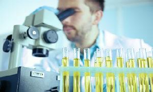 доктор смотри в микроскоп на анализ мочи
