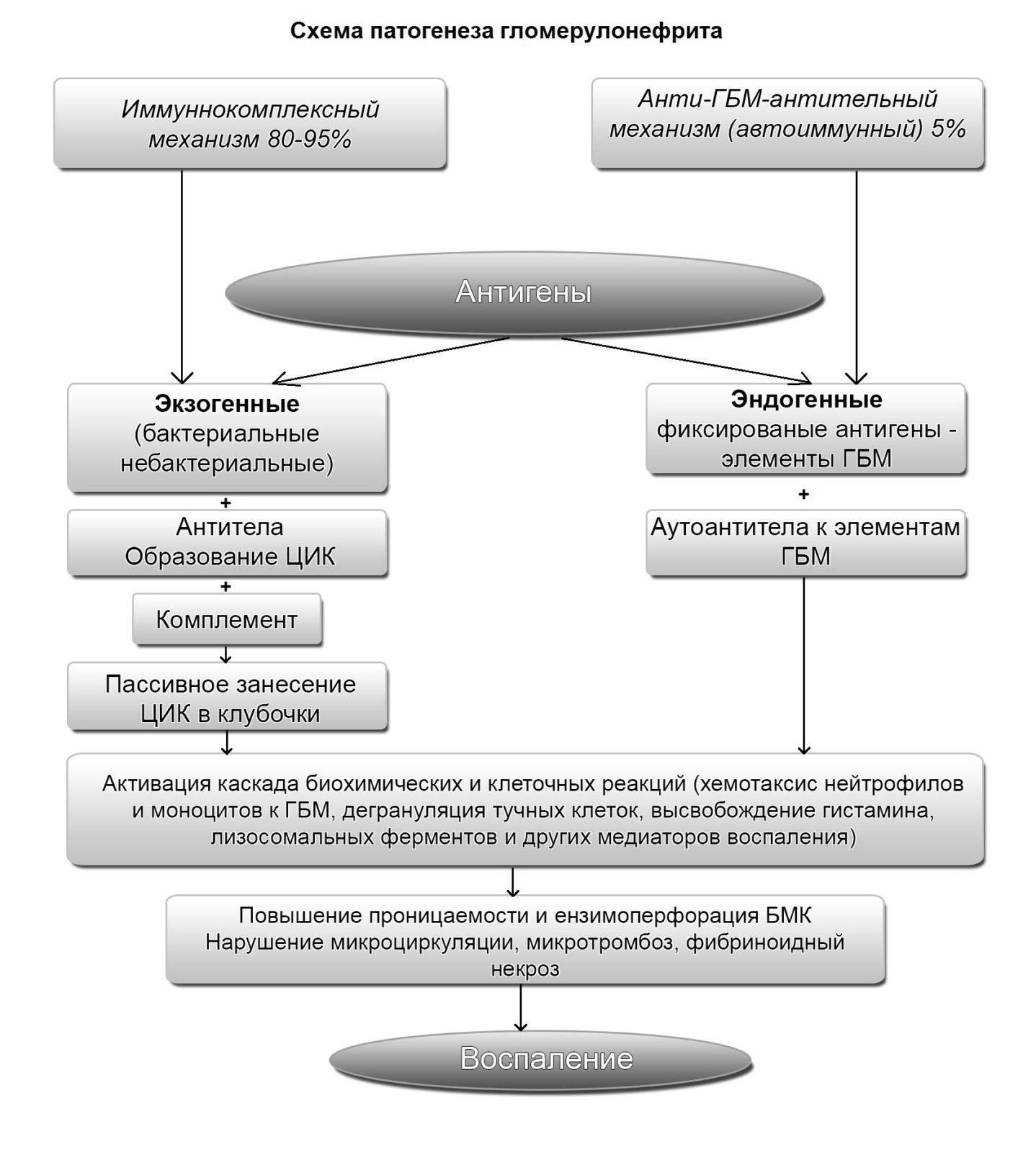 классификация и патогенез