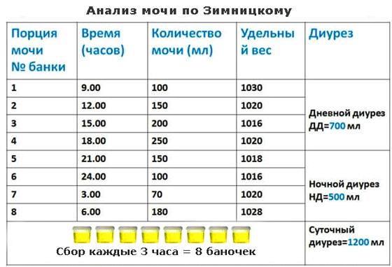 таблица результатов анализа по Зимницкому