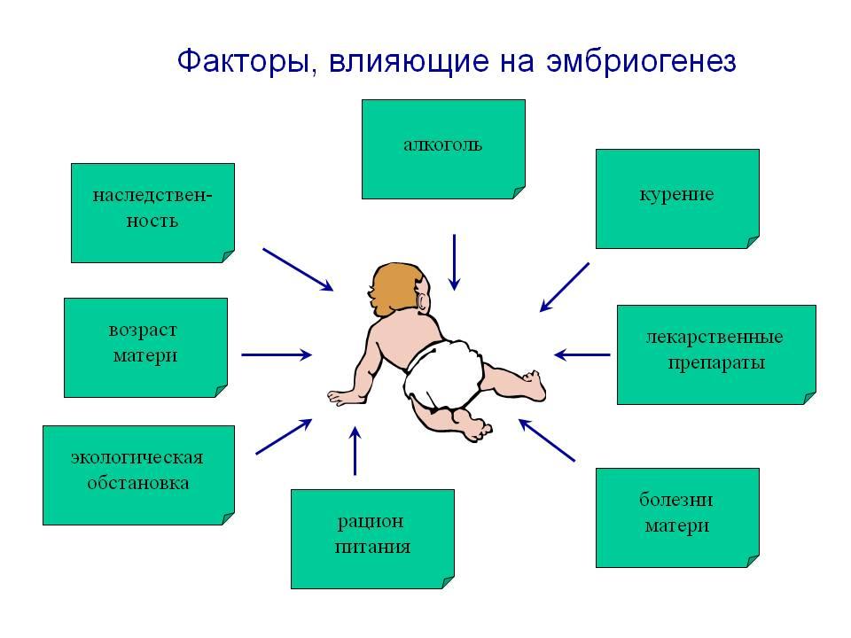 факторы влияющие на беременность