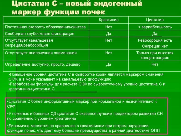 маркер Цистатн С