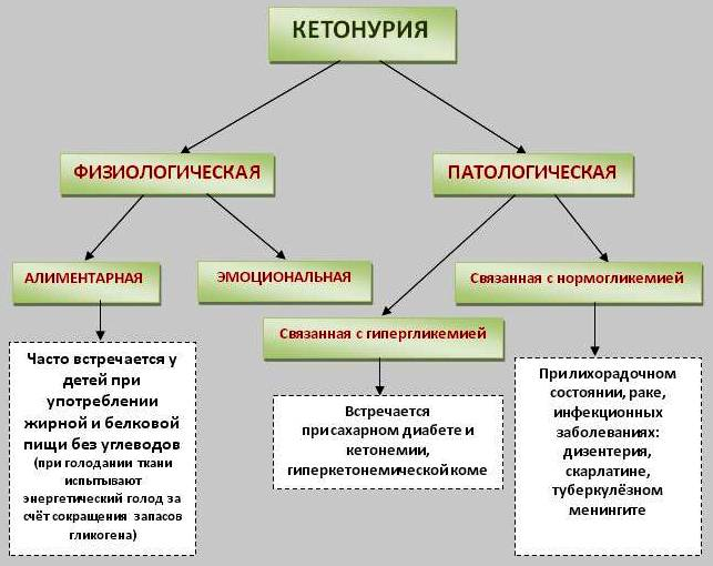 таблица видов кетанурии
