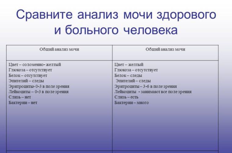 сравнение анализов