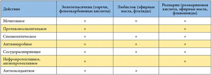 таблица состава Канефрона